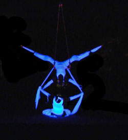 new exciting show with uv props, stilt dance, acrobatic movement theatre and fire, trapeze on stilts, silks, tissu, aerial circus acts